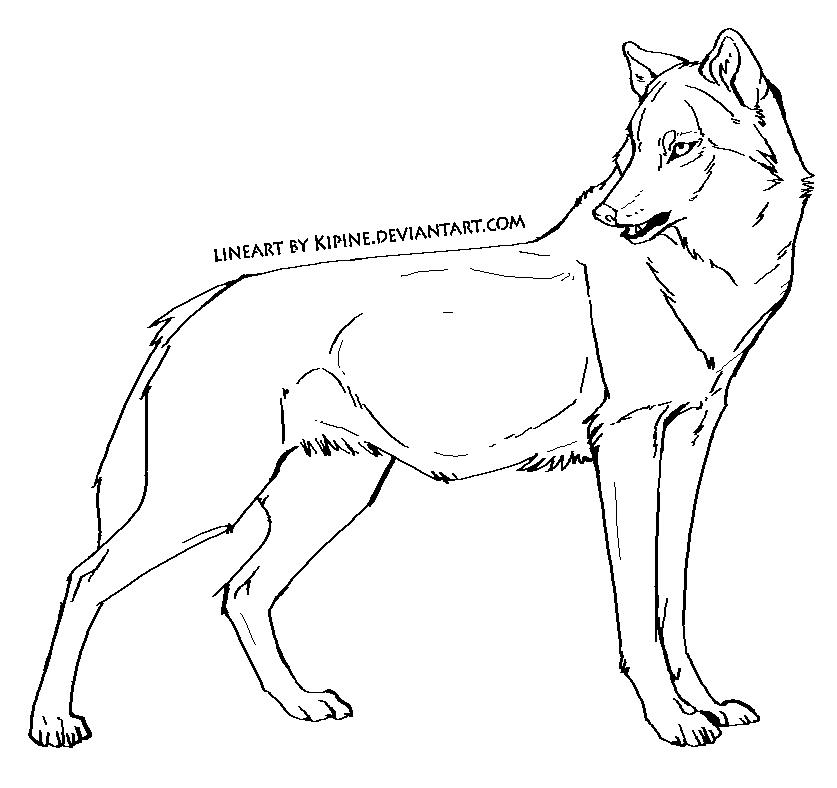 virtual wolf pack