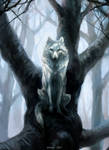 The Wolf Who Sat in a Tree