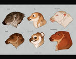Animal Breeds by Kipine