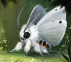 moth by Kipine