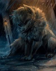 Cold Night Rain by Kipine