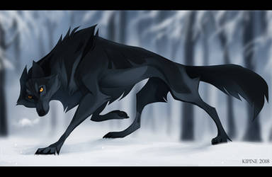 Black Wolf by Kipine