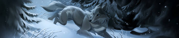 Winter Forest by Kipine