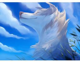 Skyblue Winds