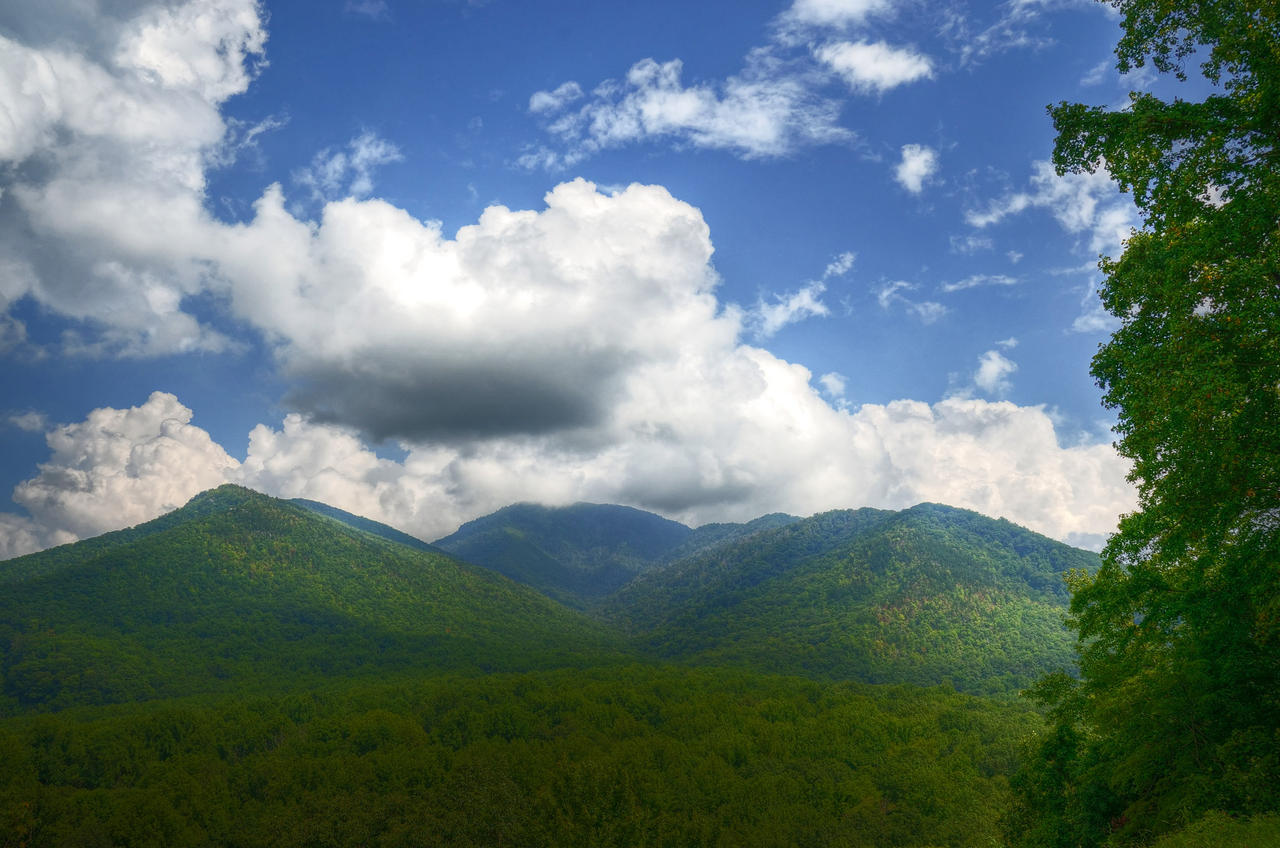 Mount Le Conte in clouds by PaulWeber