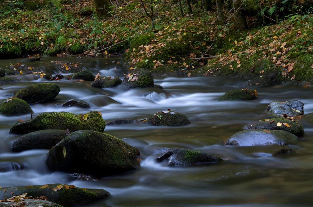 Laurel Creek by PaulWeber