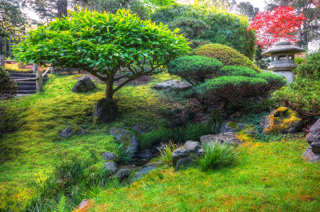 Tea Garden by PaulWeber