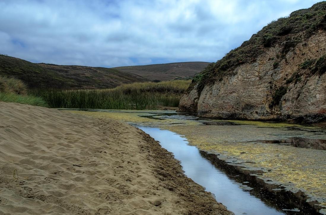 Marsh by PaulWeber