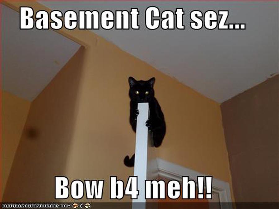 basement cat strikes back by rock is sponge on deviantart