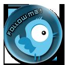 Twitter Badge by Meta-link05