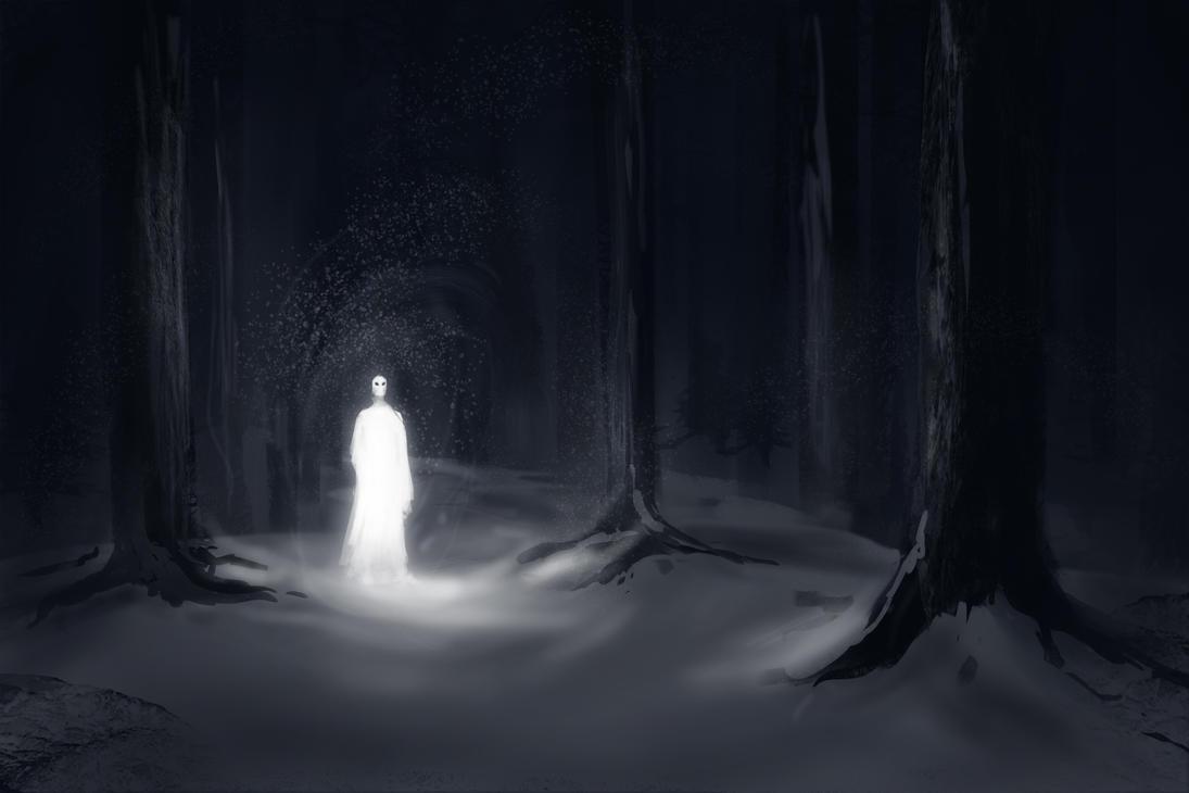 Výsledek obrázku pro white forest