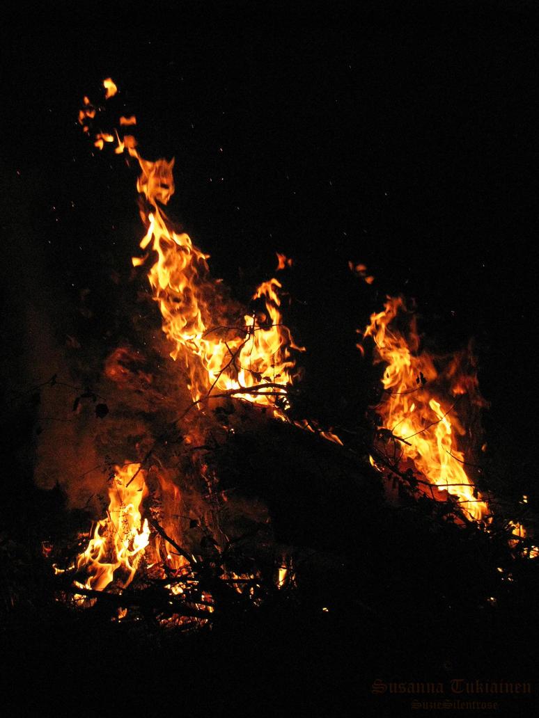 Burn 'em down by SuzieSilentrose