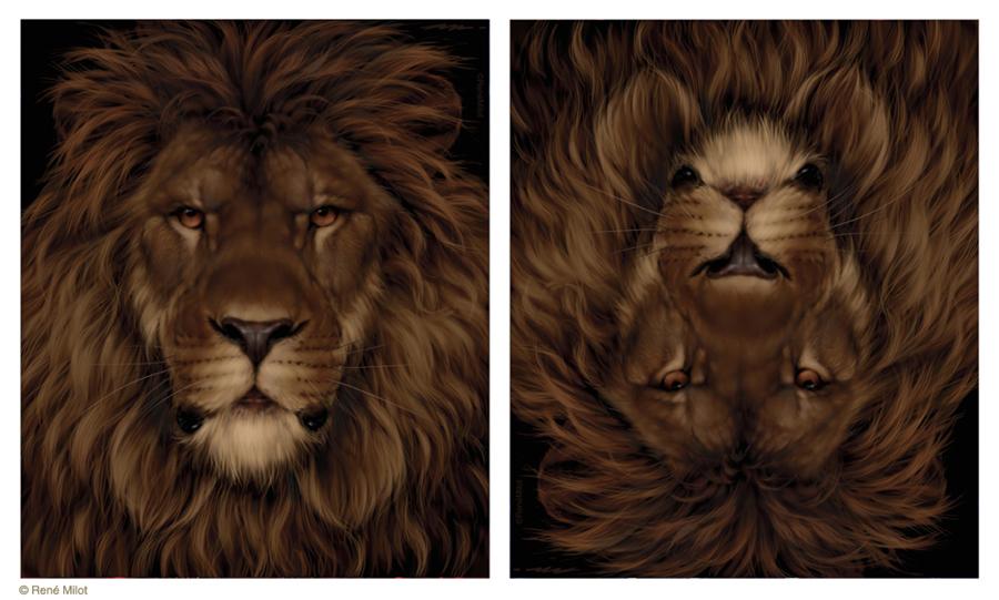 Lion mouse by ReneMilot