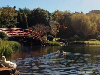 A Japanese Garden by Calypso31