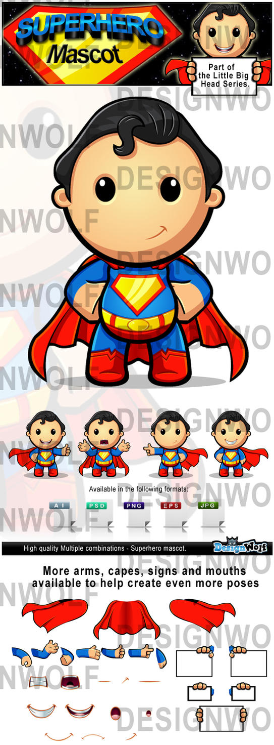 Superhero Mascot Character by Npr1977