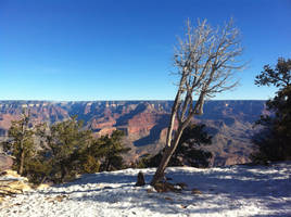 Grand Canyon 06 by ElleShaped
