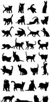 Cats Silhouettes Big Pack