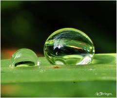 M3330 - Liquid gem. by Lothringen