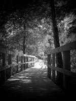 Lake Martin walkway and bridge by CajunButton