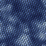 Blue Scales