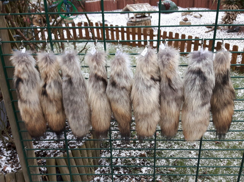 COYOTE TAILS FOR SALE by WendigoIllustration