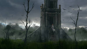 A visit to the swamp temple