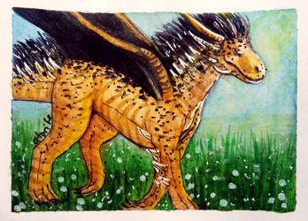 ACEO-Dandelion field by atorife
