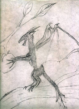 not all dragons are big