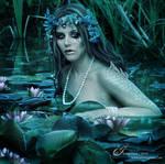 Swamp Siren