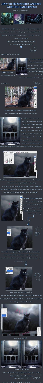 Tutorial -Animals + Background