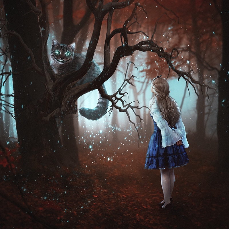 Alice in Wonderland by A-Faun
