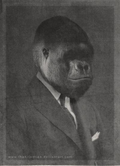 theKrisztian's Profile Picture