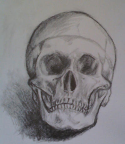 Skull - Practise by MidoriAida