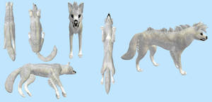 Semi-Realistic Wolf Texture - FH by Unnuuk