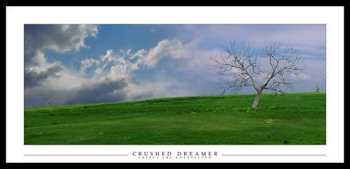 Crushed Dreamer