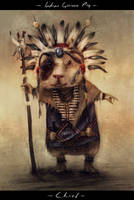 Indian Guinea Pig Concept by misi006