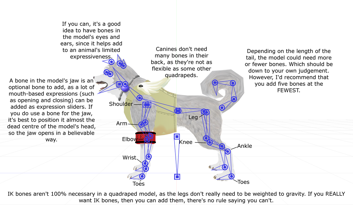 Canine (or quadruped) anatomy in MMD by Miku-Nyan02 on DeviantArt