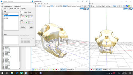 PMXe: Wolf Skull (almost complete)