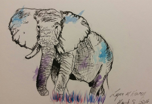 Elephant by That70sshowlova