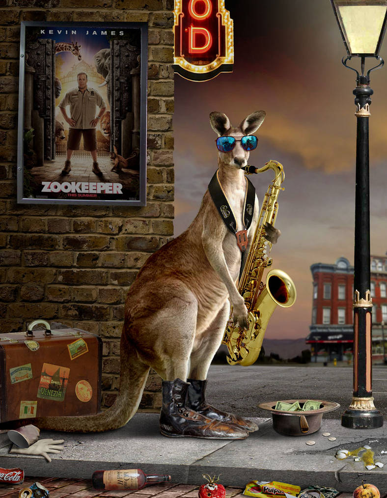 Busking Kangaroo by funkwood