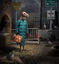 Vulture by funkwood