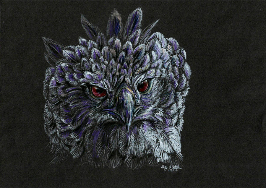 Harpy eagle by lupinemoonfeather on deviantart - Harpy eagle hd wallpaper ...