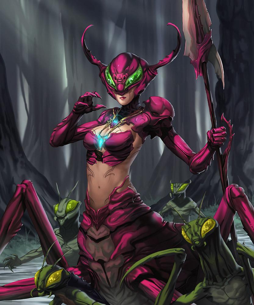 MDZ Cherry Ant Queen