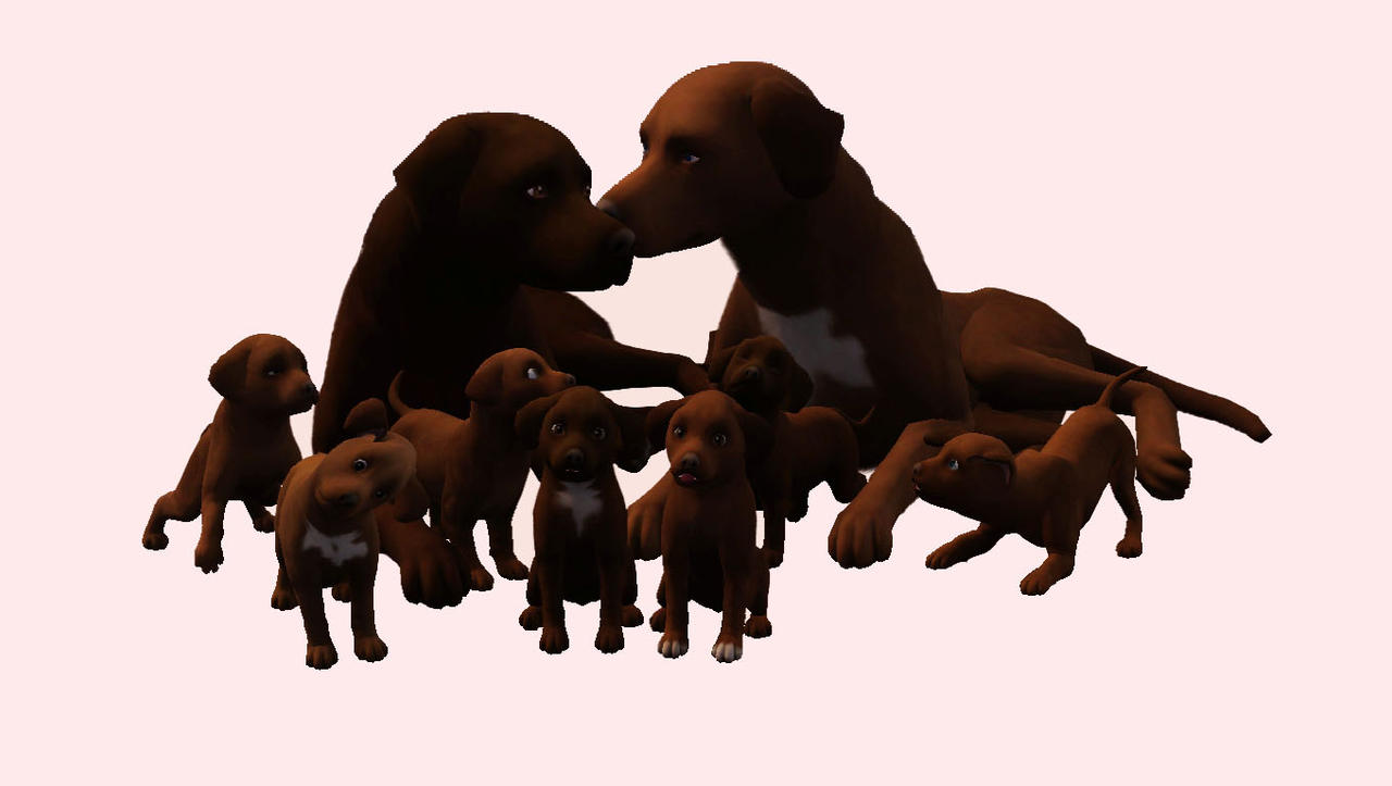 How Many Puppies Can A Dog Have In Sims