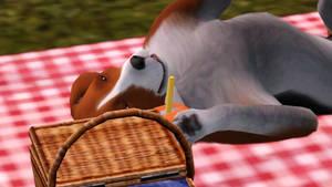 Happy having a picnic