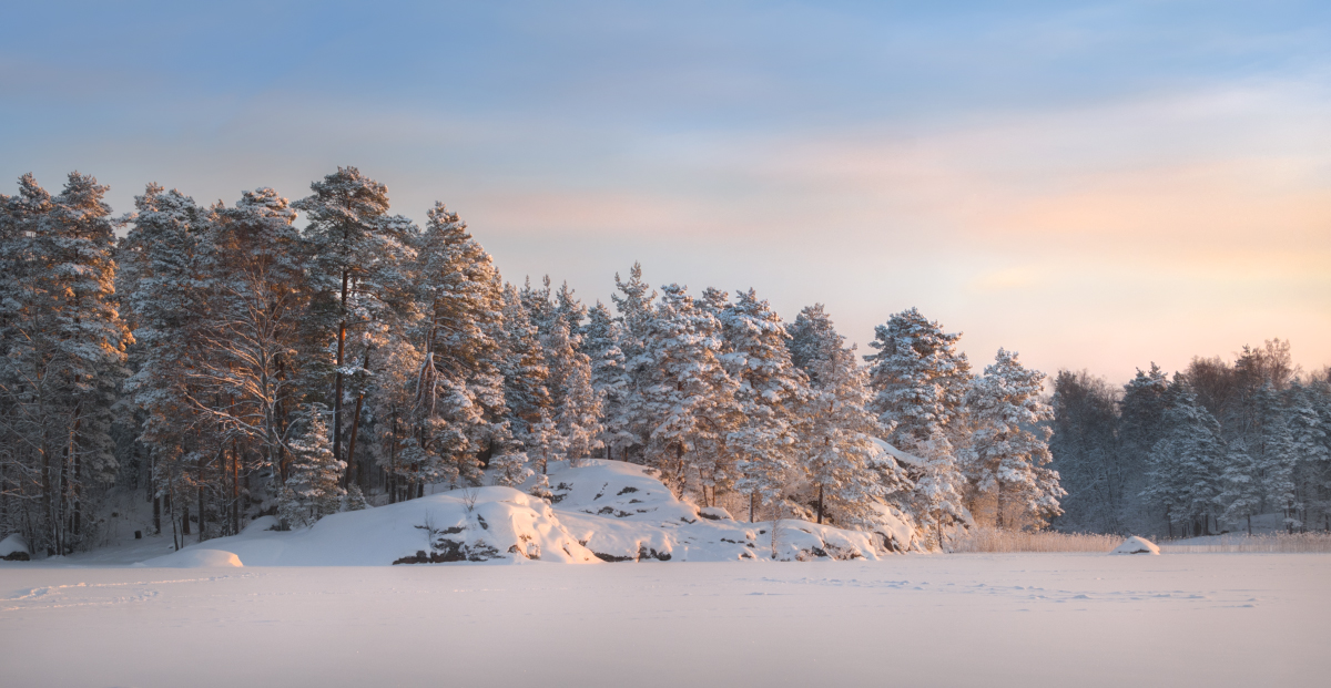 Winter morning by xrust