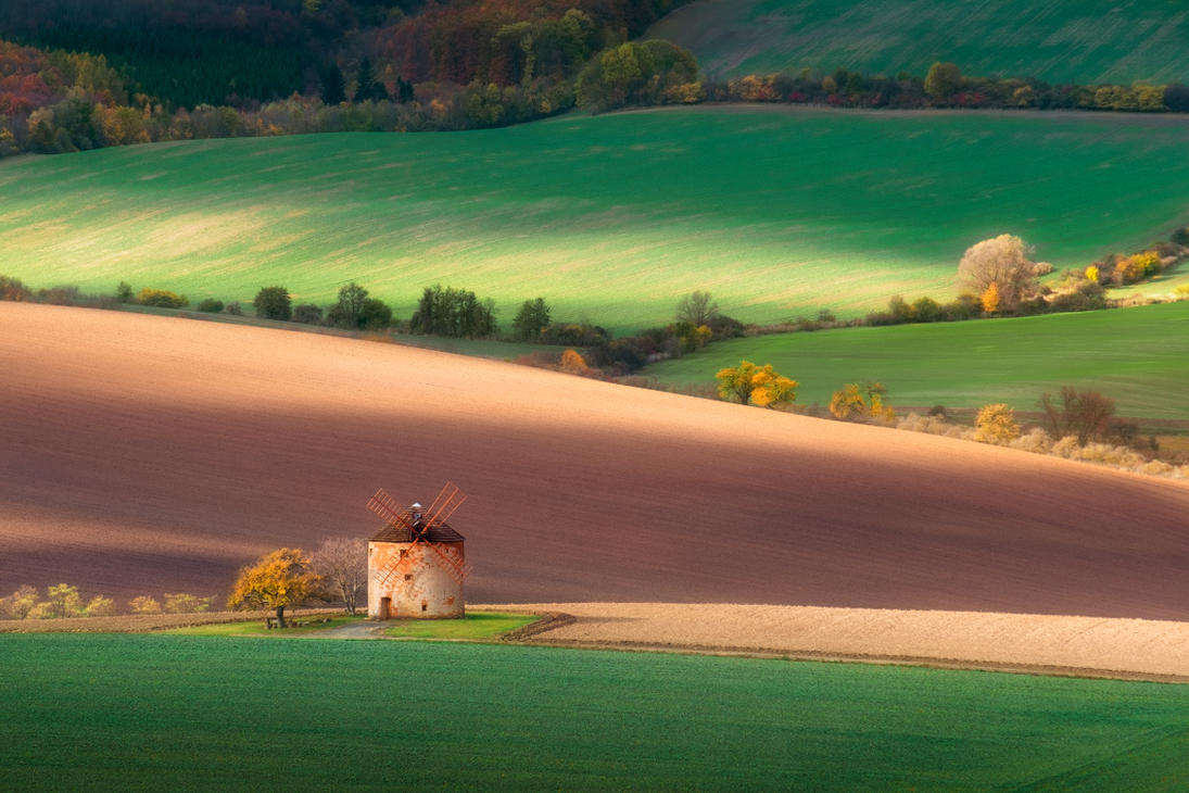 Sunny fields by xrust