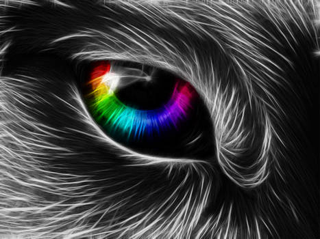 The eye of imagination~