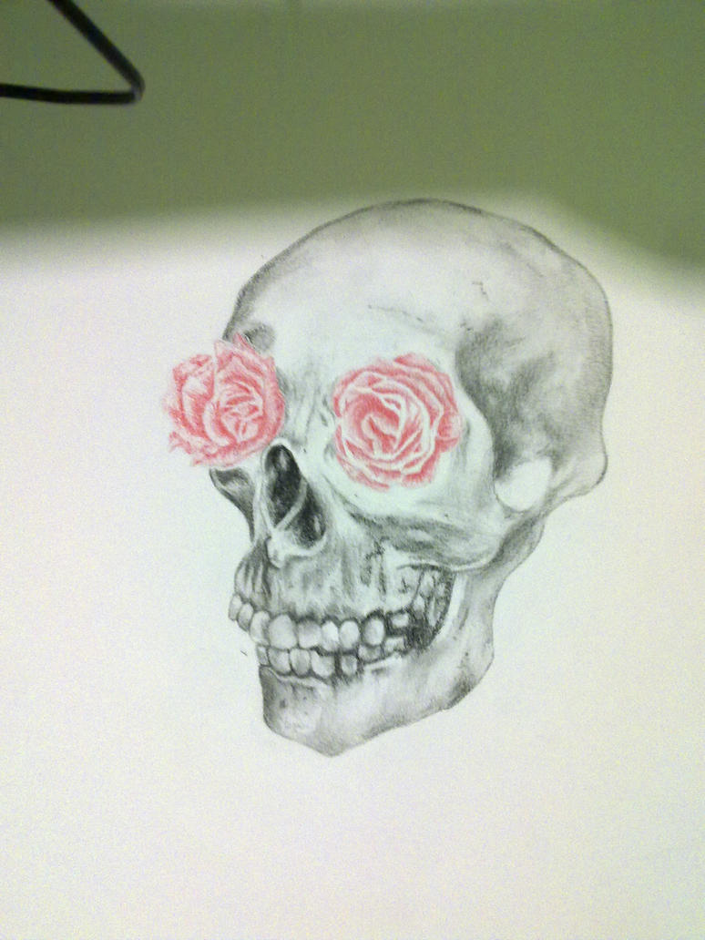 skull and roses eyes by cariocaCRO on DeviantArt