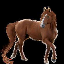 Horse Pre-Cut #4